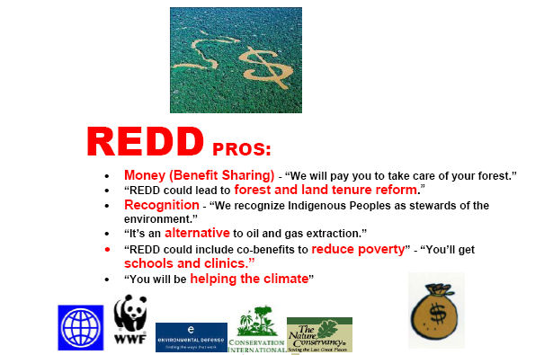 REDD - Reaping Profits from Evictions, land grabs
