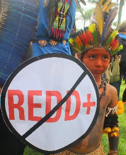 Brazilian indigenous Child with No REDD Shield 2