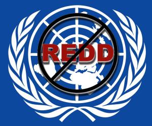 NoRedd-UN-logo