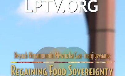 Regaining Food Sovereignty: Neyaab Nimamoomin Mewinzha Gaa-inajigeyang